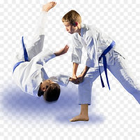 kisspng-karate-judo-japanese-martial-art