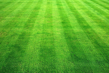 lawn care team lebanon pa