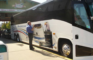 bus tours and service