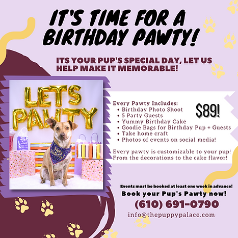 birthday party ad (1).png