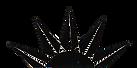 Blan Structures Loysville logo