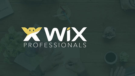 Wix SEO Professionals introduce you to Wix SEO