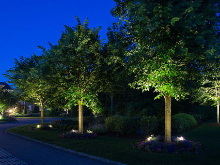 Outdoor Landscape Lighting Will Change the Way You See