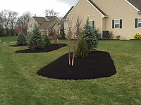 lawn treatment company lebanon pa