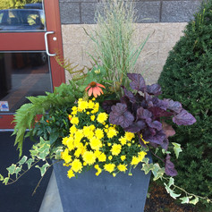 outdoor planters bright potted plants for spring