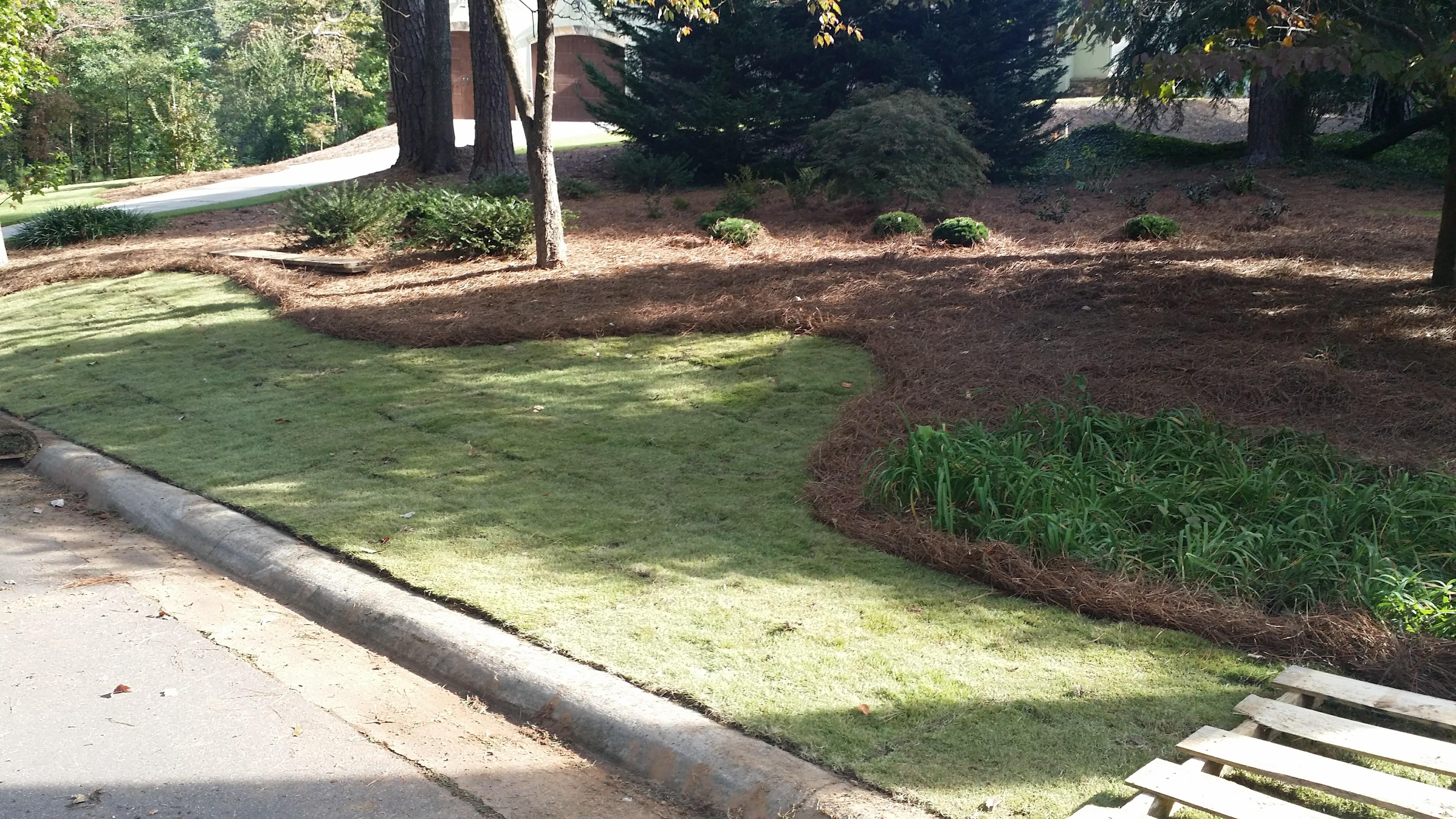 lawn maintenance company