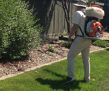 Pest Control Services in Franklin, NJ