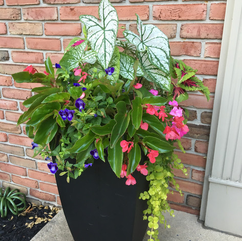 spring potted planters - outdoor container planters