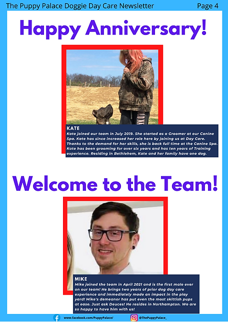 newsletter 4.png