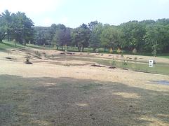 lawn seeding company harrisburg