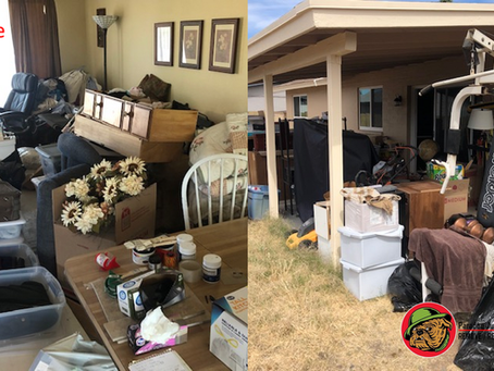 Benefits of Eco-Friendly Junk Removal