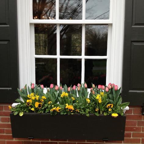 spring window planter