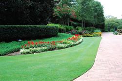 lawn treatments - keep your lawn green atlanta