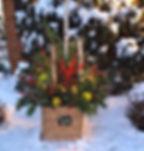 winter container gardens