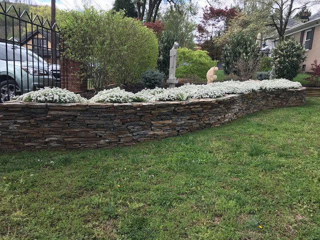 Dry stack wall with softscape