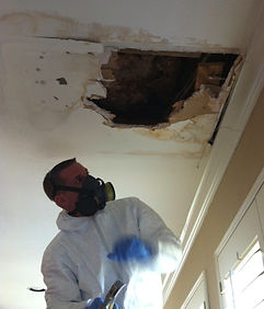 Expert Mold Inspector in Garland Texas