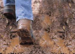 Walking_in_mud
