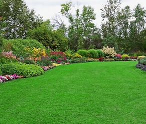 Eco-Friendly Green Lawn Pest Control Franklin NJ