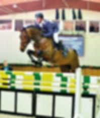 Tailormade Diarado's Boy, stallion