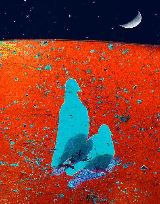 Pigeons Of The Apocalypse.jpg