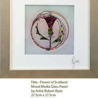 The Flower / Flower of Scotland Series