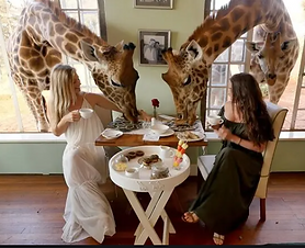 Custom Africa Vacation | GeoLuxe Travel | women eating breakfast with giraffes