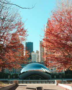 Custom Alaska and US Vacation   GeoLuxe Travel   autumn trees in Chicago