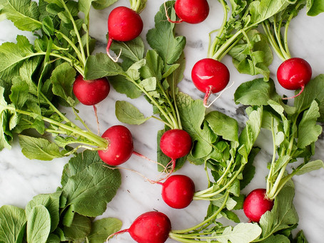 An Experiment with Radish Greens