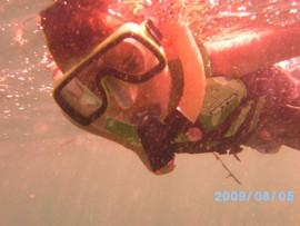 James Michael snorkeling