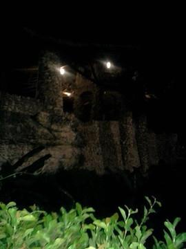 Night st the San Antonio Botanical Garde