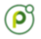 logo_powell365_2-1.png