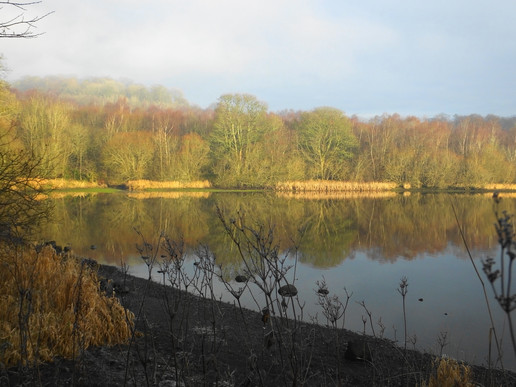 December reflections on the dam
