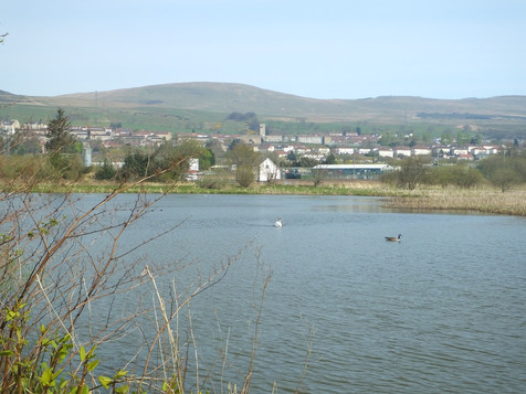Looking towards Kilsyth