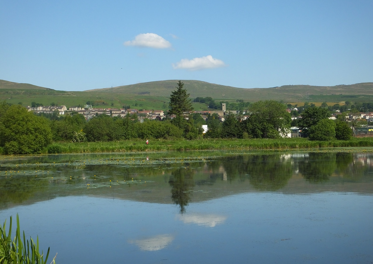 View of Kilsyth from Bogside
