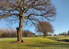 Golf Course Jan 2021