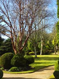 Walled Garden (2)