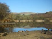 The dam, Kilsyth Hills in background.JPG