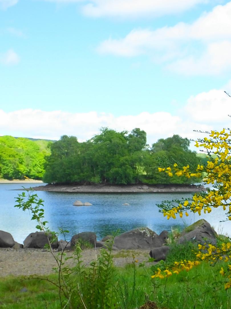 The island in the dam