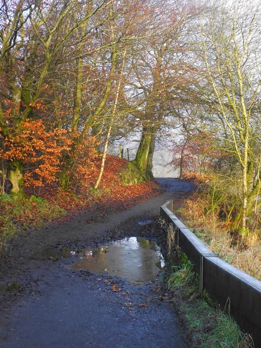 Path beside the dam