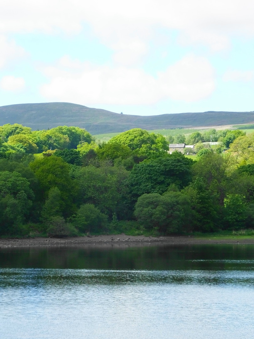 Kilsyth Hills from the Dam