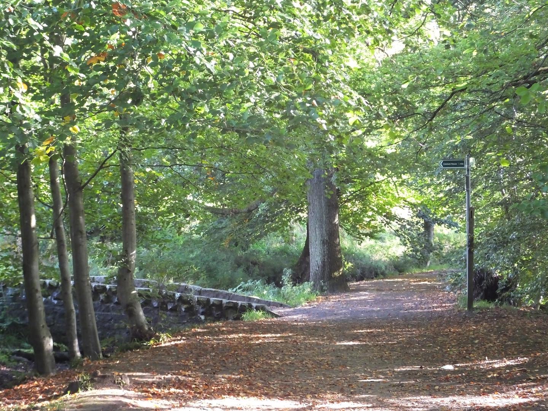 Bridge to Colzium House
