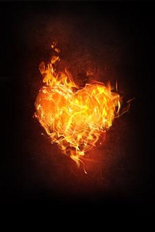 heart-1783918__340.jpg
