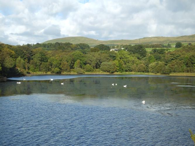 Banton Loch (The Dam)