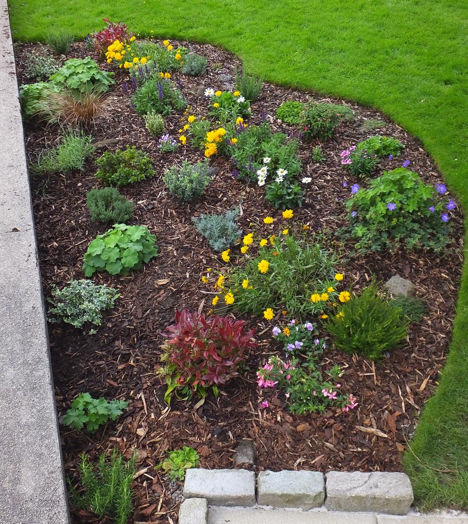 Peace Garden Sept 2020