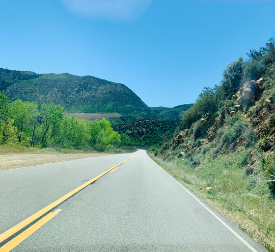 Taking a road trip is good for the soul!