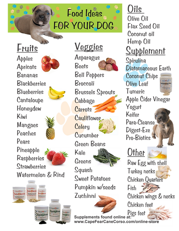Raw Foods For Dogs.png