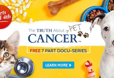 The Truth about Pet Cancer