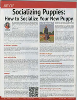 How to Socialize Your New Puppy