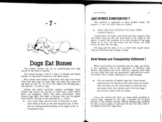 The Raw Diet For Your Dog - Part 3
