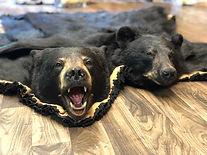bear rugs 2.jpg
